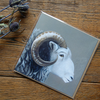 Herdwick Greeting Card