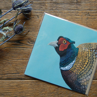 Pheasant Greeting Card