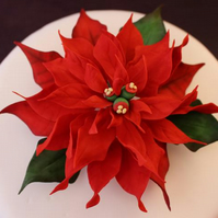 Wired Christmas cake decoration - Large Poinsettia