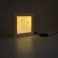 'High in the Sky', Wooden Lightbox With Seagull Image