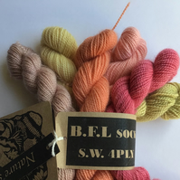 Naturally Hand Dyed B.F.L. Sock minis bundle 120g ( 6 x20g minis )