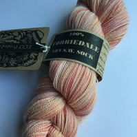 Eco Printed & Hand Painted Yarn ; Corriedale High twist Sock Yarn 100g  col 010
