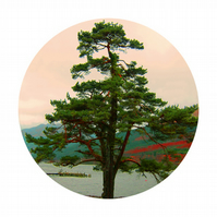 LOCH LONG II, Green tree circle Print - Great Gift for walkers & climbers