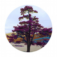 Loch Long I, Circular tree limited edition print, gift for a special occasion