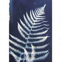 FERN I, unique nature blue print A4