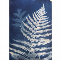 FERN III, unique nature blue print A4