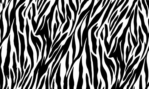 Black & White Zebra Lycra Spandex 4 Way Stretch Fabric