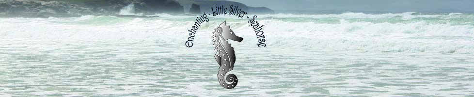 Enchanting-Little-Silver-Seahorse