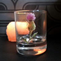 Scottish thistle glass tea light holder or whisky glass