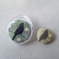 Button in a pot: Blackbird