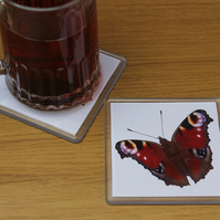 Peacock Butterfly, Single Drinks Coaster, Drinks Mat