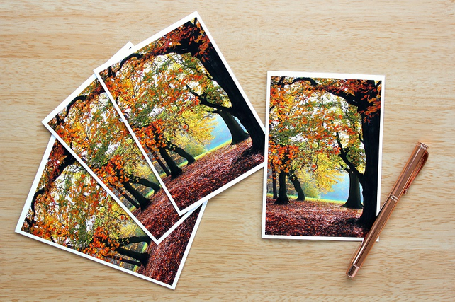 Autumn Woodland Trees Greeting Cards or Notelets, pack of 4