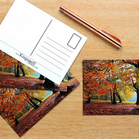 Autumn Woodland Trees Postcards Set of 4