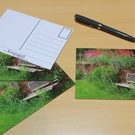 Wildflowers And The Bench Postcards Set of 4