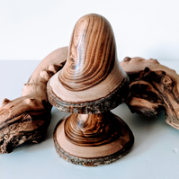 Wooden Mushroom turned from English Laburnum 896