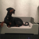 LARGE Handmade Raised Wooden Dog pet Bed crate personalised any name