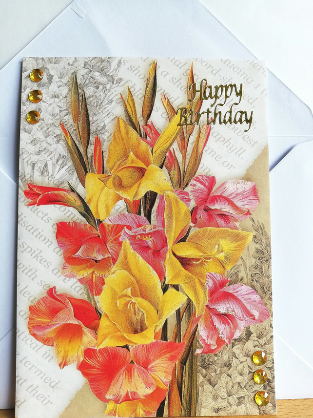 August birthday card with Gladiolus plants