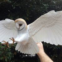 Hand made paper and wood life size Barn owl sculpture
