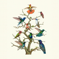 A2 'Hummingbird tree' Limited edition giclee art print