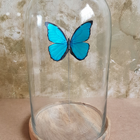 Hand made paper and wood Butterfly in bell jar