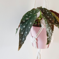 Macrame hanging planter with copper beads
