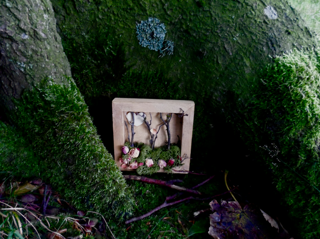 Forest Shadow Box