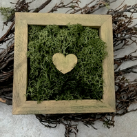 Gold heart moss shadow box