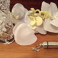 Personal Cremation Urn Set with Dragonfly charm, velvet pouch and fill kit