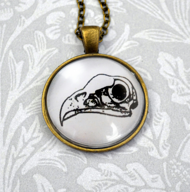 Bird Skull drawing pendant on vintage style necklace