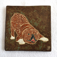 WP38 Wall plaque tile bulldog picture (Free UK postage)