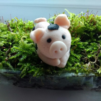 Cute pig handmade from Polymer Clay