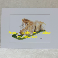 Professionally Printed A5 Print from an original watercolour Lion Mounted A4