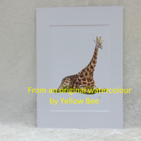 Professionally Printed A5 Print from an original watercolour Giraffe Mounted A4