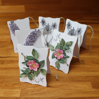 Nature Notes, Gift Tags
