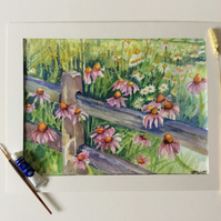 Watercolour painting of pink daisies in field with gate.