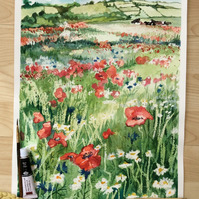 Watercolour painting of Red poppies in field with cows