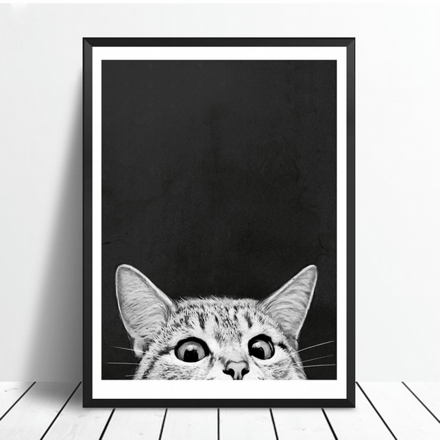 Curious - Canvas Print