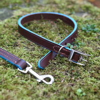 Leather dog collar & lead set