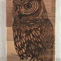 Wise Owl Woodburned Picture on Walnut