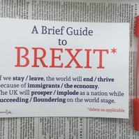 A Brief Guide to Brexit. Funny Political EU British Politics Print