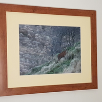 "The Majestic Stag 16"" x 12"" Frame"