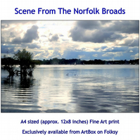 Scene From The Norfolk Broads - A4 sized (approx. 12x8 inches) Fine Art Print