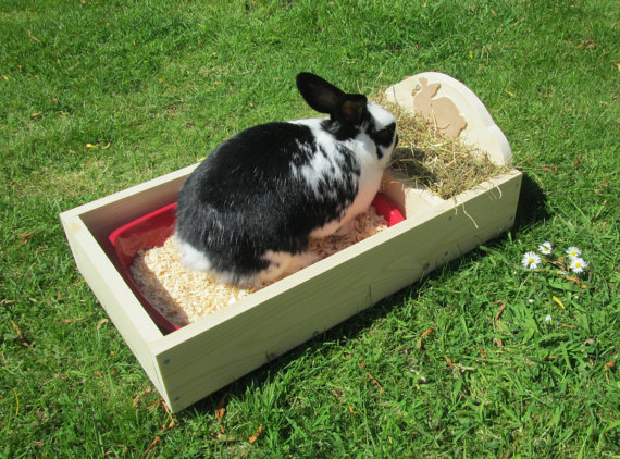 Rabbit Hay Trough withTray