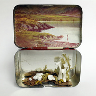 """Craggan Rour"" - story box with porcelain lichen"