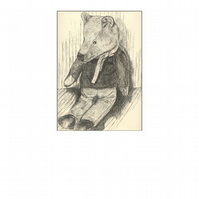 Old Bear - pack of 5 greetings cards (blank for own message)
