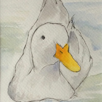 Duck - original painting