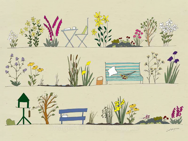 Country garden - print from digital illustration showing flowers