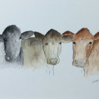 Three cows - print from watercolour illustration of farmyard cows