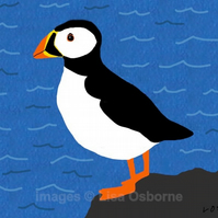 Puffin - print from illustration of this delightful sea bird