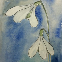 Snowdrops - watercolour painting